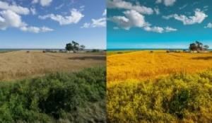 RAW sin procesar (izquierda) y JPEG procesado en Lightroom (derecha).