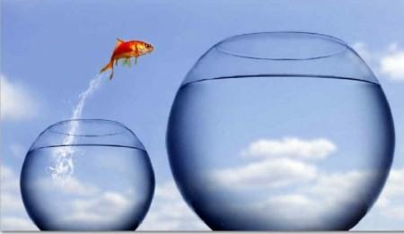 Para superar expectativas primero hay que conocerlas