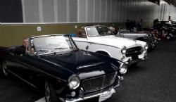 Muchos acompañaron sus autos lookeados para la ocasión