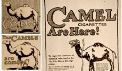 Campaña teaser anunciando la llegada de Camel.
