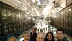 Grupo de trabajo en la Intervención en el Museo de Ciencias Naturales de La Plata. Foto Ale Marconi Todos los derechos reservados